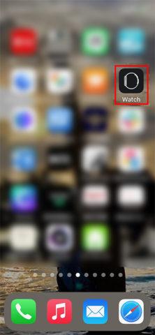 Apple Watch で スクリーンショット